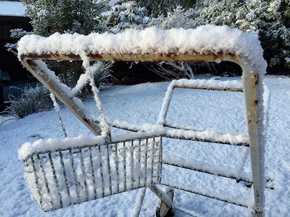 snowbart 99